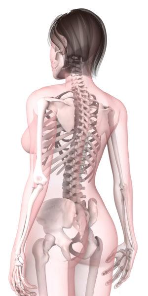 huesos-mujer